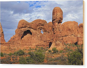 Arches National Park 8 Wood Print by Marty Koch