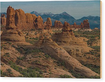 Wood Print featuring the photograph Arches National Park by Gary Lengyel