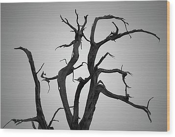 Wood Print featuring the photograph Arches Np Xix Bw by David Gordon