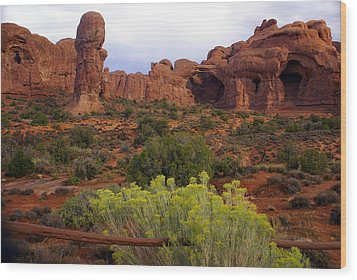 Arches Park 1 Wood Print by Marty Koch