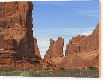Arches Park 2 Wood Print by Marty Koch