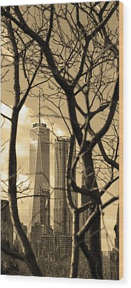 Wood Print featuring the photograph Architectural by Mitch Cat