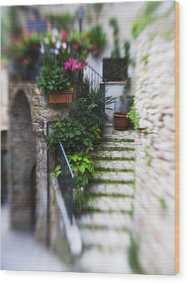 Archway And Stairs Wood Print by Marilyn Hunt