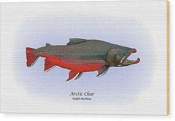 Arctic Charr Wood Print by Ralph Martens