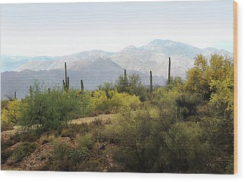 Wood Print featuring the photograph Arizona Back Country by Gordon Beck