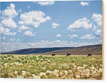 Arizona Desert Horses Wood Print by Ryan Kelly