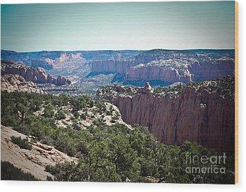 Arizona Desert Landscape Wood Print by Ryan Kelly