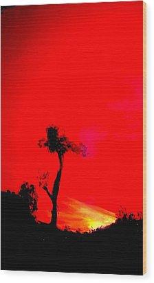 Arizona Wood Print