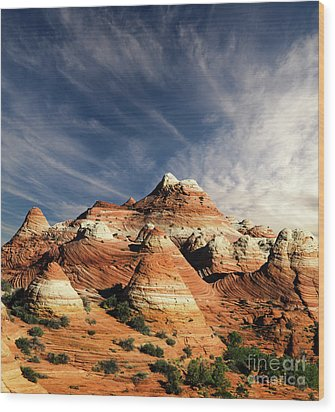 Wood Print featuring the photograph Arizona North Coyote Buttes by Bob Christopher