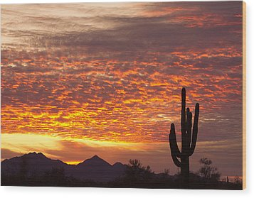 Arizona November Sunrise With Saguaro   Wood Print