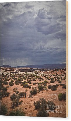 Arizona Rainy Desert Landscape Wood Print by Ryan Kelly