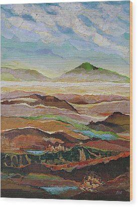 Arizona Reflections Number Five Wood Print by Don Trout