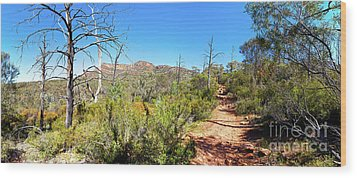 Wood Print featuring the photograph Arkaroo Rock Hiking Trail.wilpena Pound by Bill Robinson