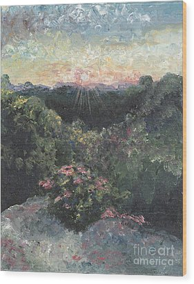 Arkansas Mountain Sunset Wood Print by Nadine Rippelmeyer