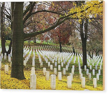 Arlington In Yellow Wood Print