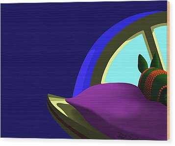 Armadillo On A Pillow Wood Print by Tom Dickson