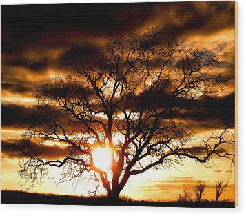 Arms Wide Open Wood Print by Karen M Scovill