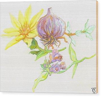 Arnica Garlic Thyme And Comfrey Wood Print by Cameron Hampton PSA