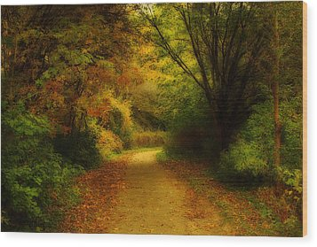 Wood Print featuring the photograph Around The Bend - Landscape by Anthony Rego
