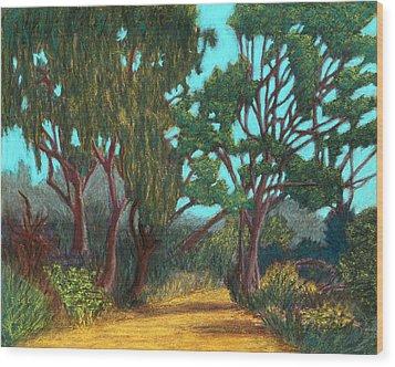 Around The Bend 02 Wood Print