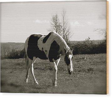 Around The Pasture Wood Print by Debra     Vatalaro
