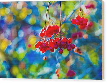 Wood Print featuring the photograph Arrowwood Berries Abstract by Alexander Senin