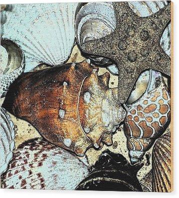 Art Shell 3 Wood Print