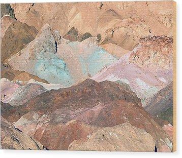 Artist Palette Wood Print by William Thomas