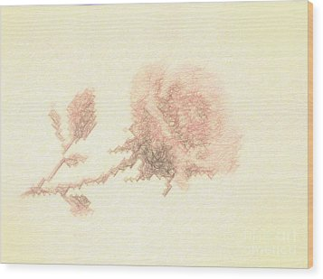 Wood Print featuring the photograph Artistic Etched Rose by Linda Phelps