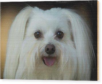 Artistic Puppy Wood Print