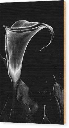 Arum Wood Print by Vah Pall