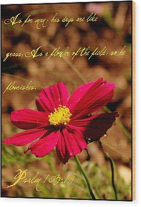 As A Flower Of The Fields Wood Print by Elizabeth Babler