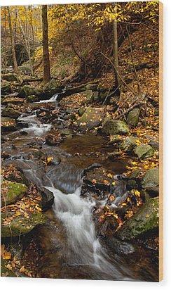 As The Water Runs Wood Print by Karol Livote