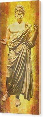 Wood Print featuring the photograph Asclepius Descending by Nigel Fletcher-Jones