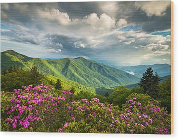Asheville Nc Blue Ridge Parkway Spring Flowers Wood Print