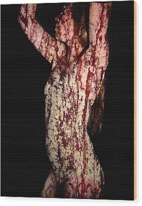Ashley Wood Print by Arla Patch