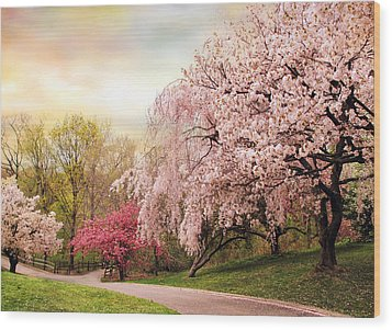 Asian Cherry Grove Wood Print by Jessica Jenney