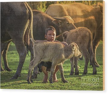 Wood Print featuring the photograph Asian Children And Buffalo At Countryside. by Tosporn Preede