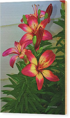 Asian Lilly Spring Time Wood Print