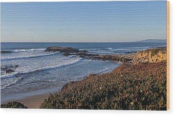 Asilomar Shoreline Wood Print by Mark Barclay