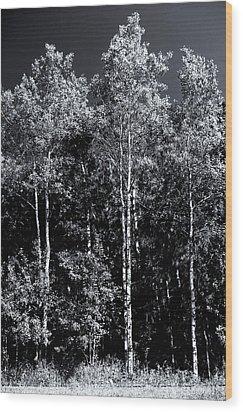 Aspen Drama Wood Print