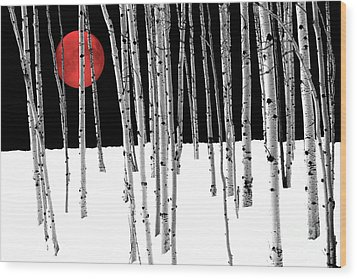 Wood Print featuring the photograph Aspen Grove Winter by Juli Scalzi