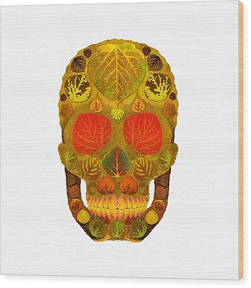 Aspen Leaf Skull 12 Wood Print by Agustin Goba
