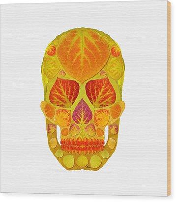 Aspen Leaf Skull 13 Wood Print by Agustin Goba