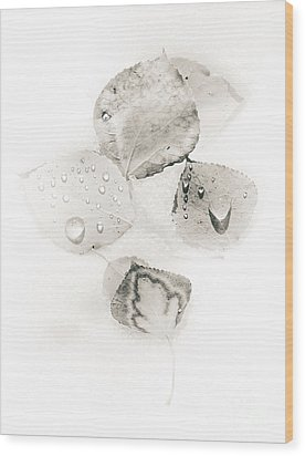 Wood Print featuring the photograph Aspen Leaves Of White by The Forests Edge Photography - Diane Sandoval