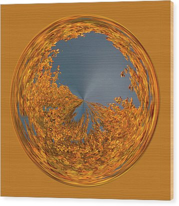 Aspen Orb Wood Print by Bill Barber