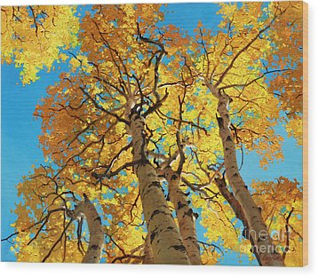 Aspen Sky High 2 Wood Print by Gary Kim