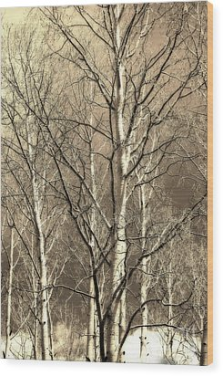 Wood Print featuring the photograph Aspen Sky White Mountains Arizona by Donna Greene