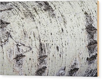 Wood Print featuring the photograph Aspen Tree Bark by Christina Rollo
