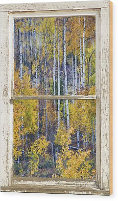 Aspen Tree Magic Cottonwood Pass White Farm House Window Art Wood Print
